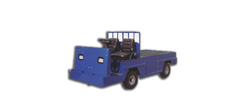 electric-carts-2